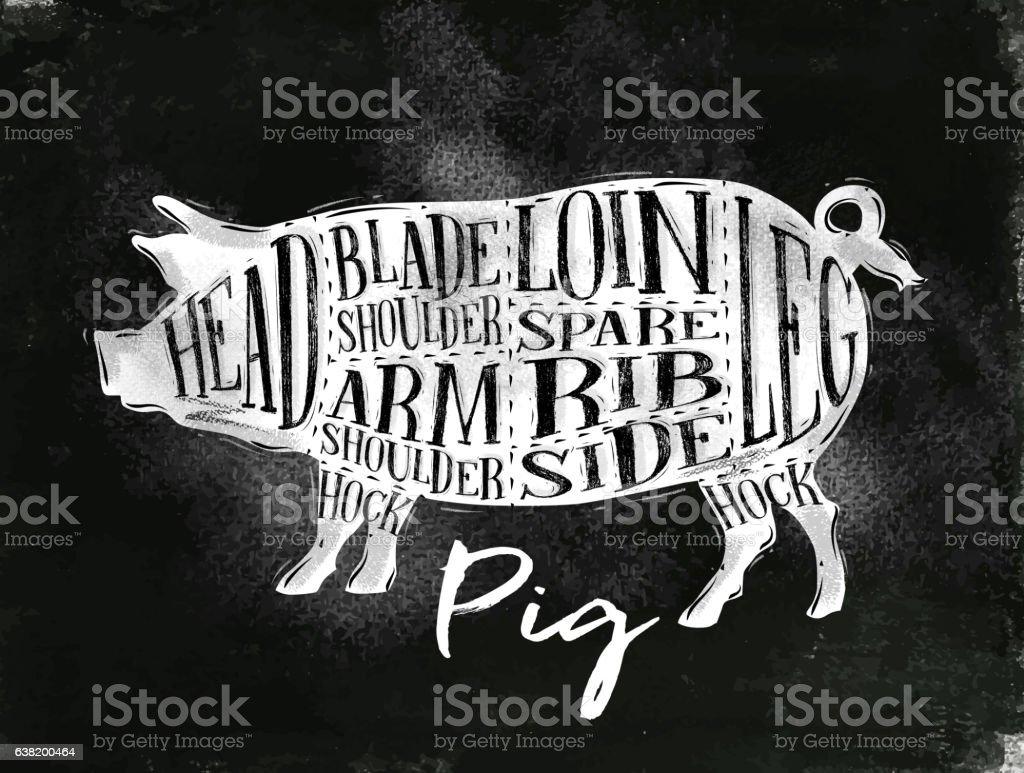 Pig pork cutting scheme chalk vector art illustration