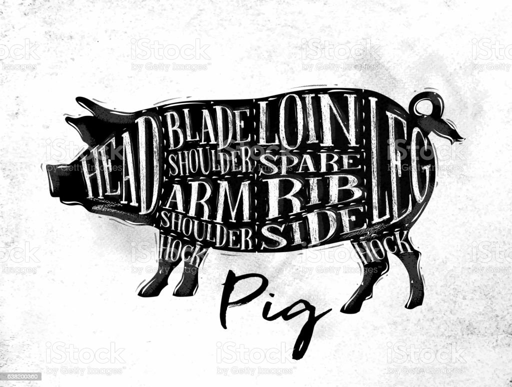 Pig pork cutting scheme vector art illustration