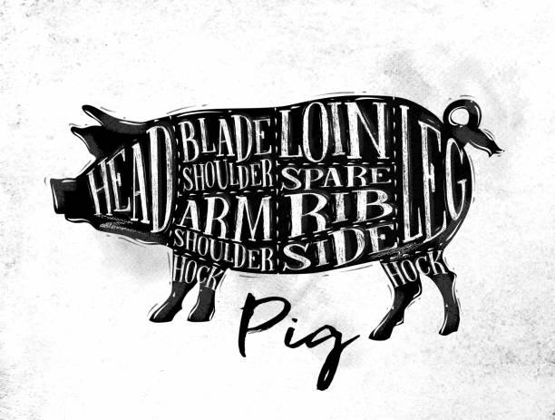 bildbanksillustrationer, clip art samt tecknat material och ikoner med pig pork cutting scheme - loin