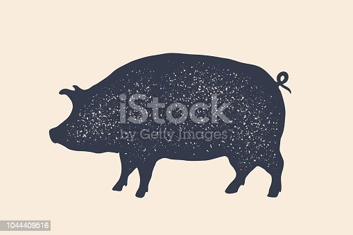 Pig, pork. Vintage label, retro print, poster for Butchery meat shop, pig silhouette. Label template for meat business, meat shop. Isolated black silhouette pig on white background. Vector Illustration