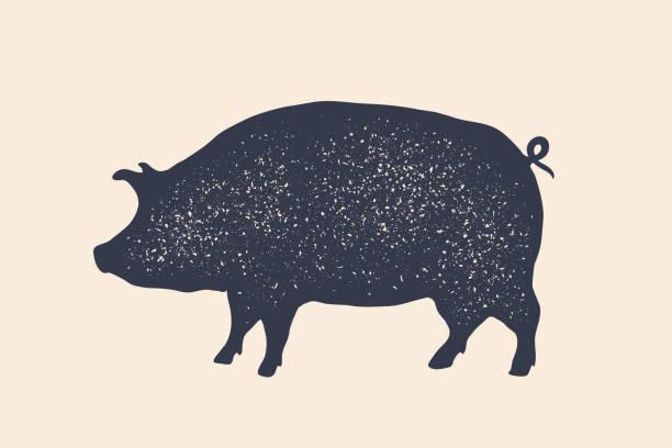 Pig, pork. Vintage label, retro print, poster for Butchery Pig, pork. Vintage label, retro print, poster for Butchery meat shop, pig silhouette. Label template for meat business, meat shop. Isolated black silhouette pig on white background. Vector Illustration pork stock illustrations