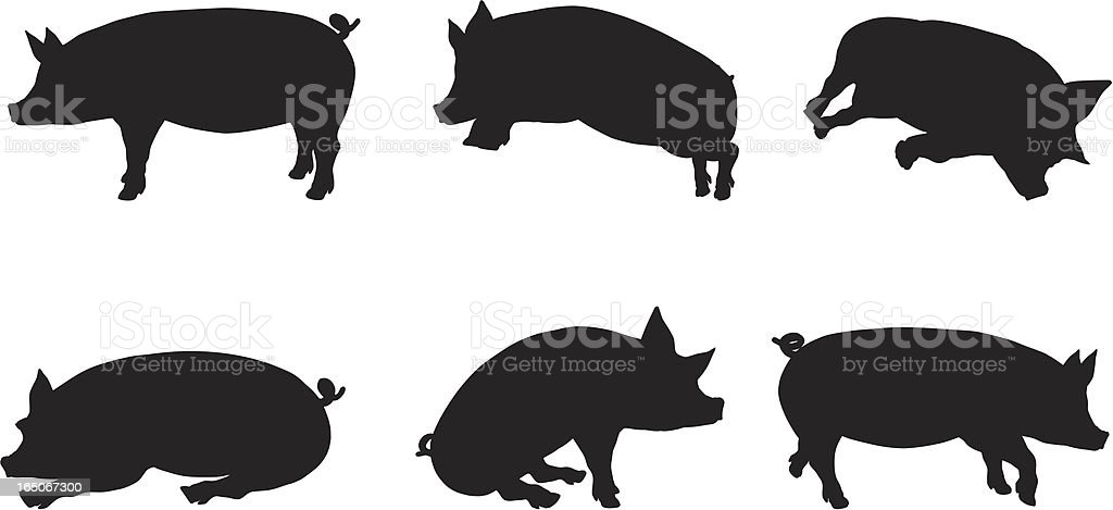 Pig Silhouette Collection royalty-free stock vector art
