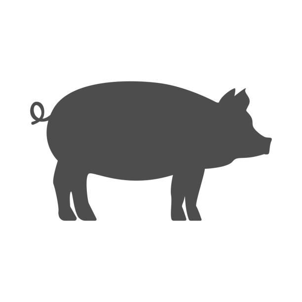 pig vector art & graphics | freevector.com  free vector