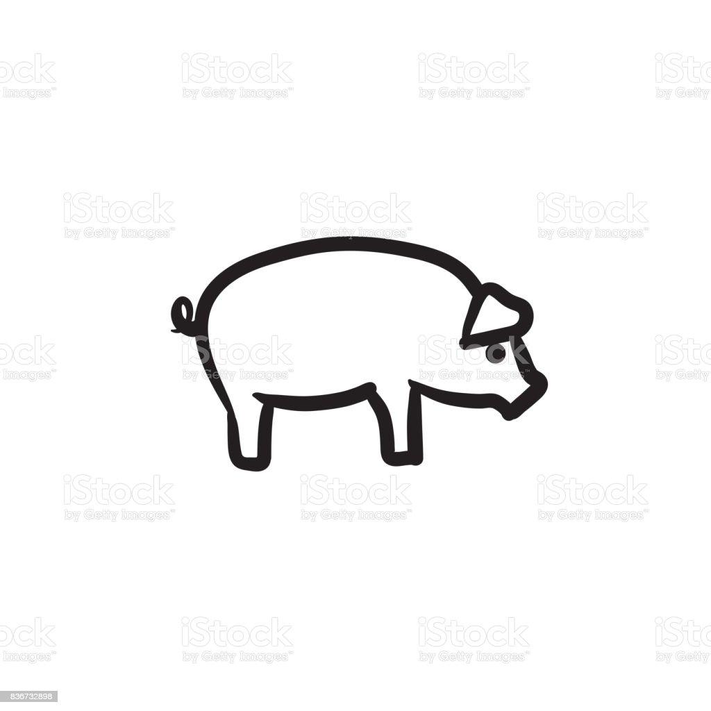 Gemütlich Schwein Auge Anatomie Bilder - Menschliche Anatomie Bilder ...