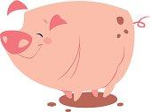 Vector illustration of a pig.