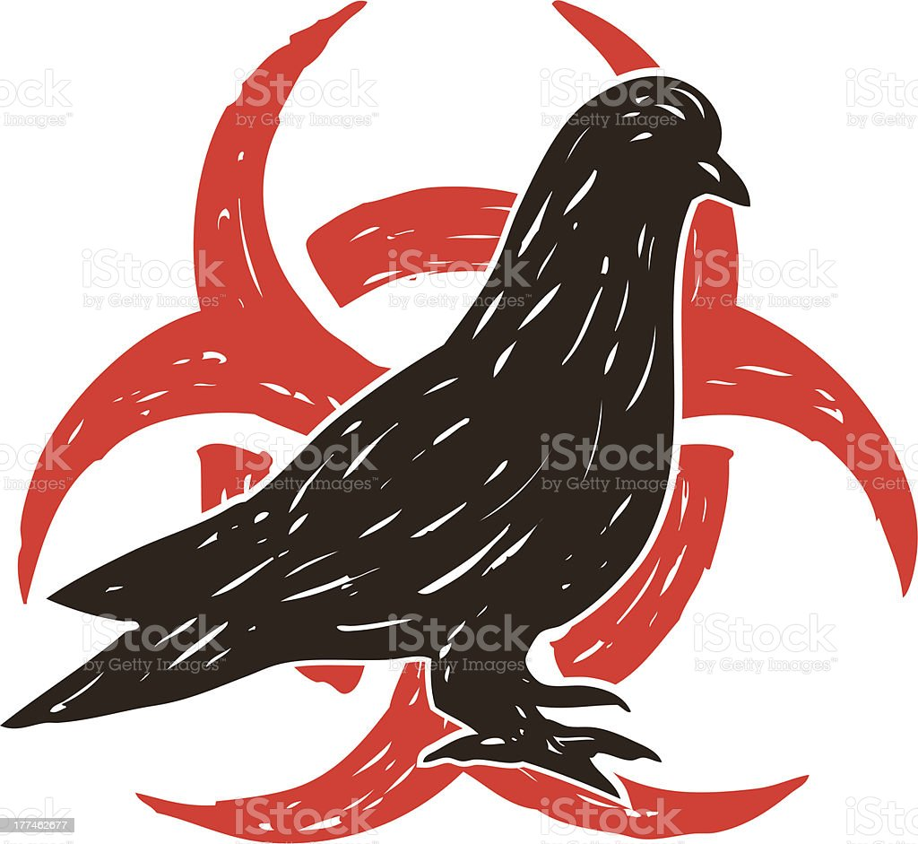 pigeon bird flu vector art illustration