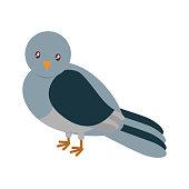 cartoon pigeon bird icon over white background vector illustration