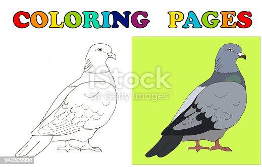 Güvercin Boyama Sayfaları Için Güvercin Okul öncesi çocuklar Için