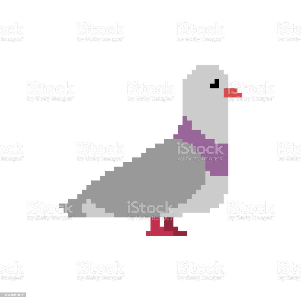 ピジョン ピクセル アート。8 ビットの鳩。ベクトル図 ベクターアートイラスト