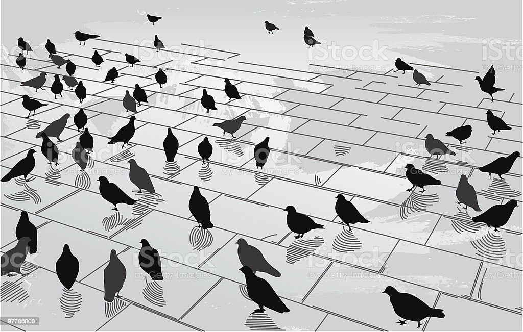 Pigeons in the Square vector art illustration