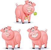Three pigs isolated on white. A pig with a four leaf clover in its mouth, a pig with a puzzled face and a smiling pig. EPS 8, fully editable, grouped and labeled in layers.