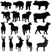 Farm livestock silhouettes of pigs, sheep, cows and deer from different angles. Front, side, behind and three quarter views of each animal are shown.