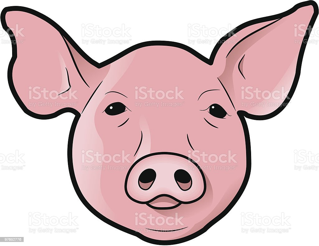Pig's Head royalty-free pigs head stock vector art & more images of animal