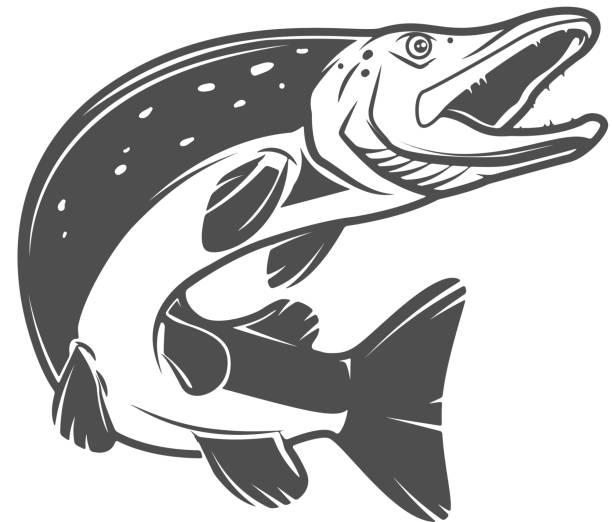 hecht fisch symbol isoliert auf weißem hintergrund. design-elemente für abzeichen, emblem, label und zeichen. vektor-illustration - seehecht stock-grafiken, -clipart, -cartoons und -symbole