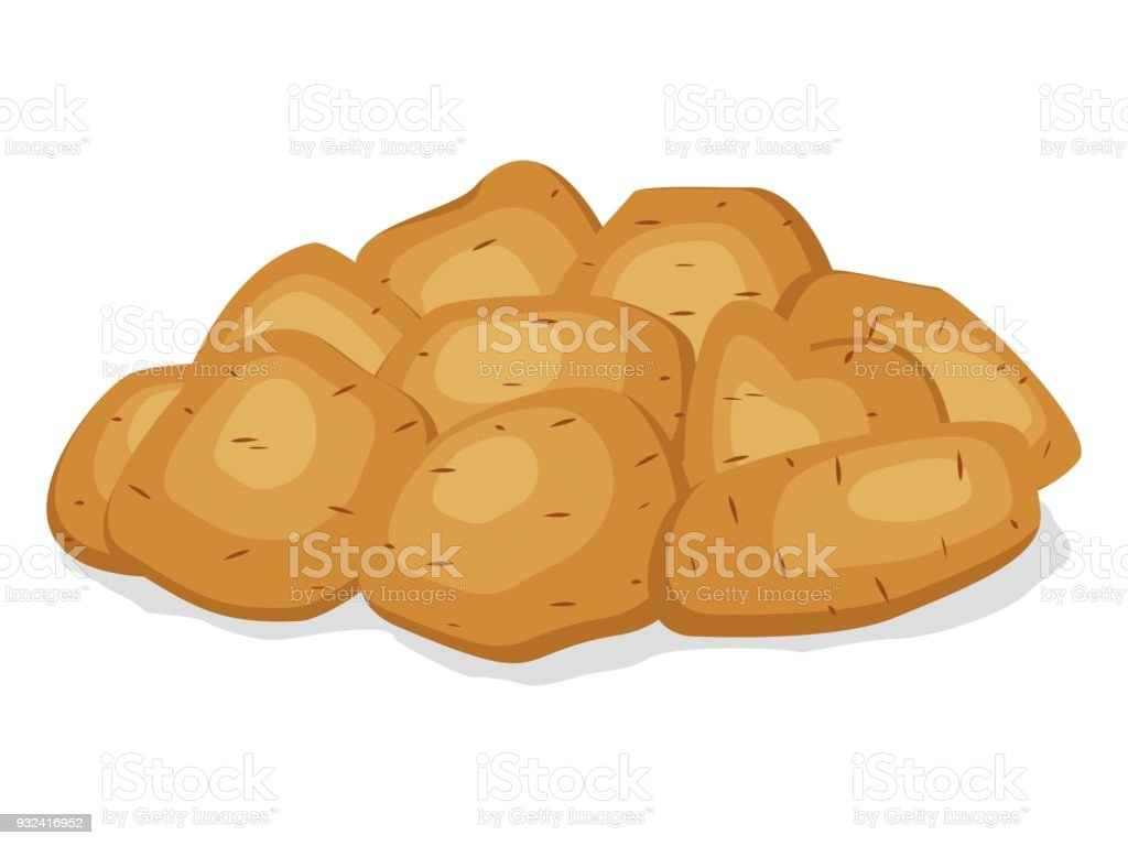Pile heap of unpeeled potatoes isolated on a white background. Potato tuber on flat style. Set vegetable potatoes different shapes with brown pointed skin. Vector illustration vector art illustration