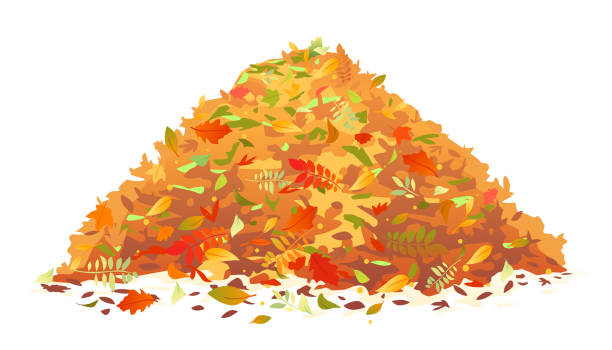Pile of Fallen Leaves Pile of various autumn fallen leaves in red and orange colors, one big dump of leaves, autumn concept illustration, isolated heap stock illustrations
