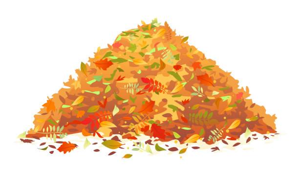 stockillustraties, clipart, cartoons en iconen met stapel van gevallen bladeren - hoop