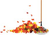 Pile of leaves and a rake.