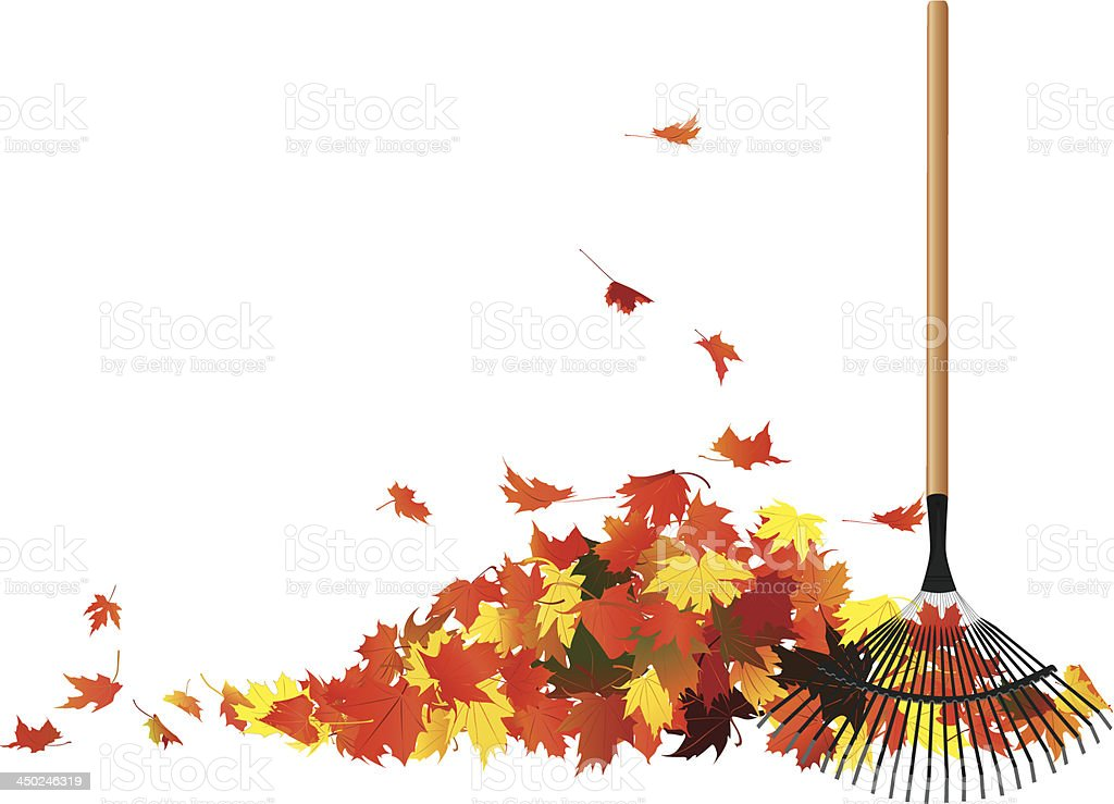 Pile of leaves And Rake vector art illustration
