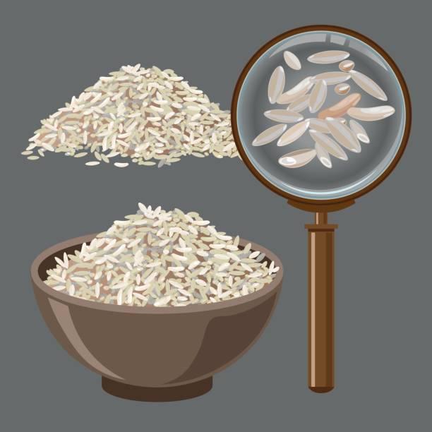illustrations, cliparts, dessins animés et icônes de pile de riz et de loupe - risotto