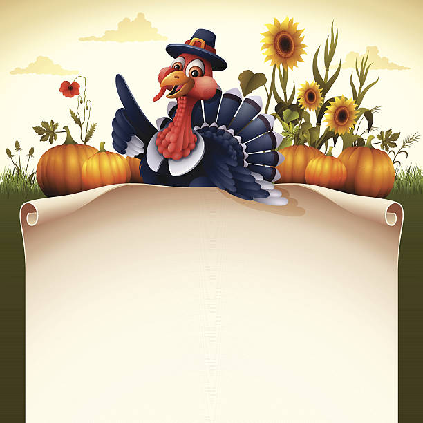 пилигрим турция с прокрутки знак - thanksgiving turkey stock illustrations