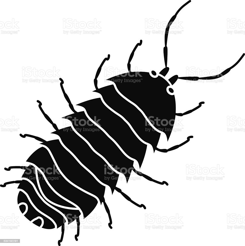 Pill Bug Commonly Called Roly Poly In Black And White Stock Vector ...