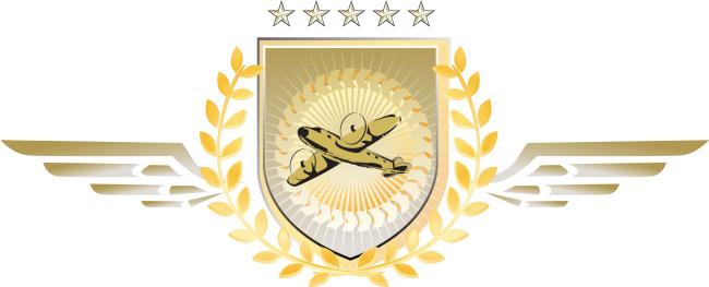pilot excellence emblem