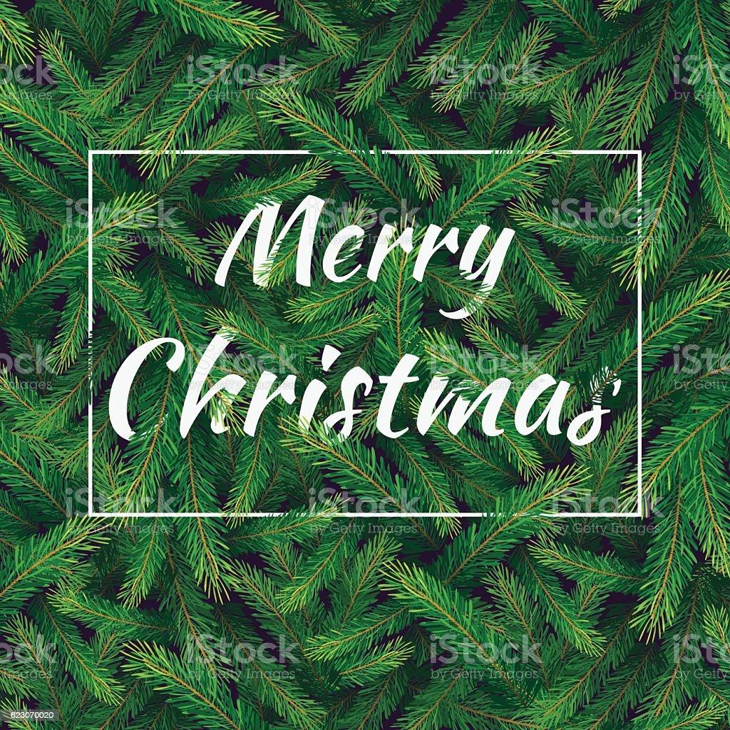 pine branch card vector art illustration