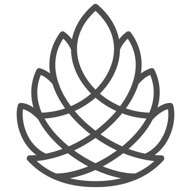 bildbanksillustrationer, clip art samt tecknat material och ikoner med pine kotte linje ikon, nyår koncept, pinecone tecken på vit bakgrund, cedar kon ikon i disposition stil för mobil koncept och webbdesign. vektorgrafik. - wood sign isolated