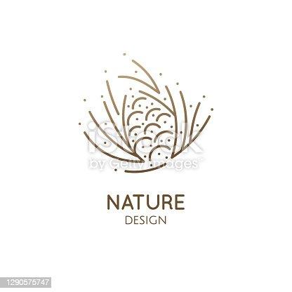 istock Pine cone logo design 1290575747