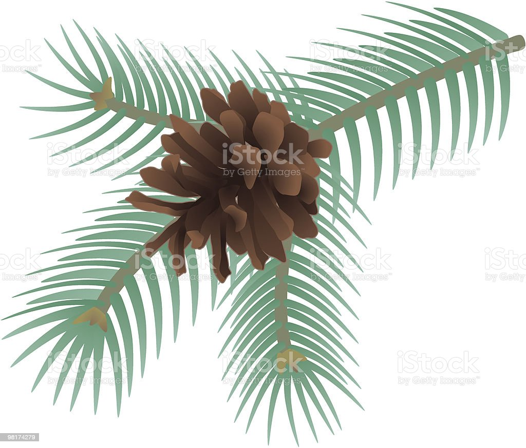 pine cone royalty-free stock vector art