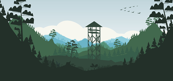 Pine forest and watchtower