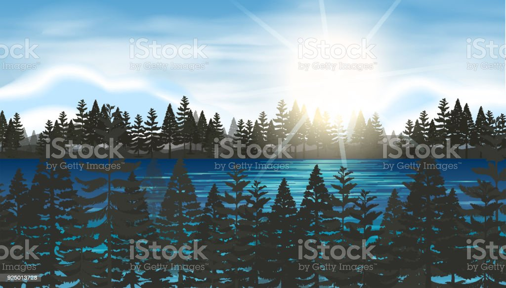 Pine forest at the lake vector art illustration