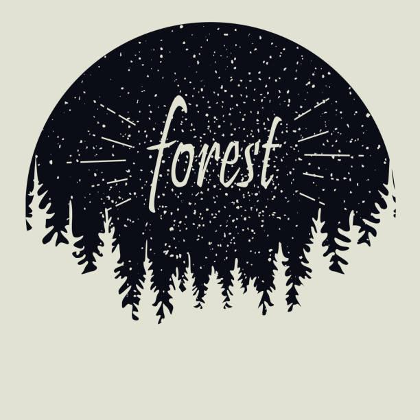 pine forest star sky. design template. sketch vector illustration - adventure stock illustrations