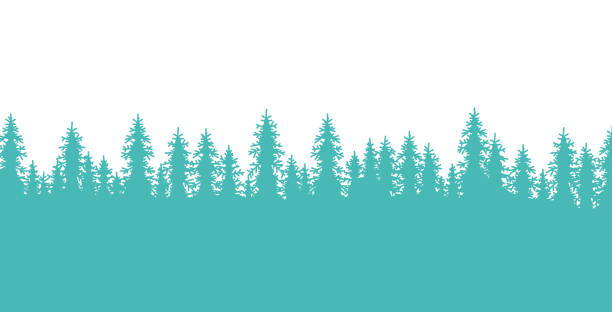 Pine Forest Tree-Lined Border Pine tree forest lined border element design. treelined stock illustrations