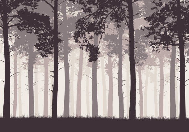 stockillustraties, clipart, cartoons en iconen met pine forest met boomstammen en takken in retro kleuren - vector - naaldbos