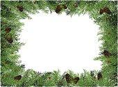 useful pine frame vector