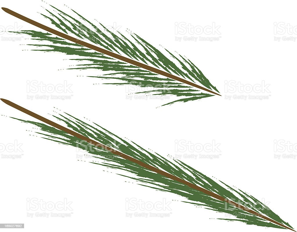 Pine Tree Branches royalty-free stock vector art