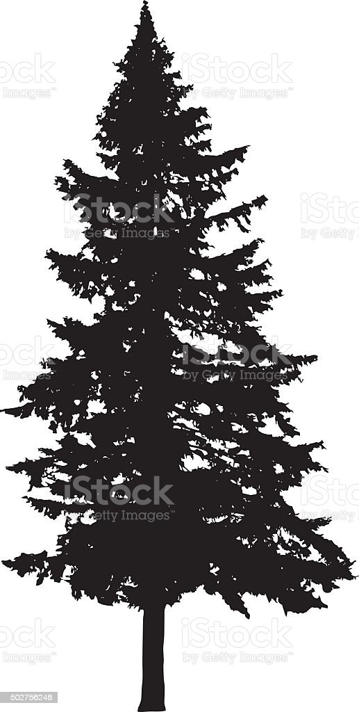 Pine Tree Silhouette Stock Vector Art & More Images of ...