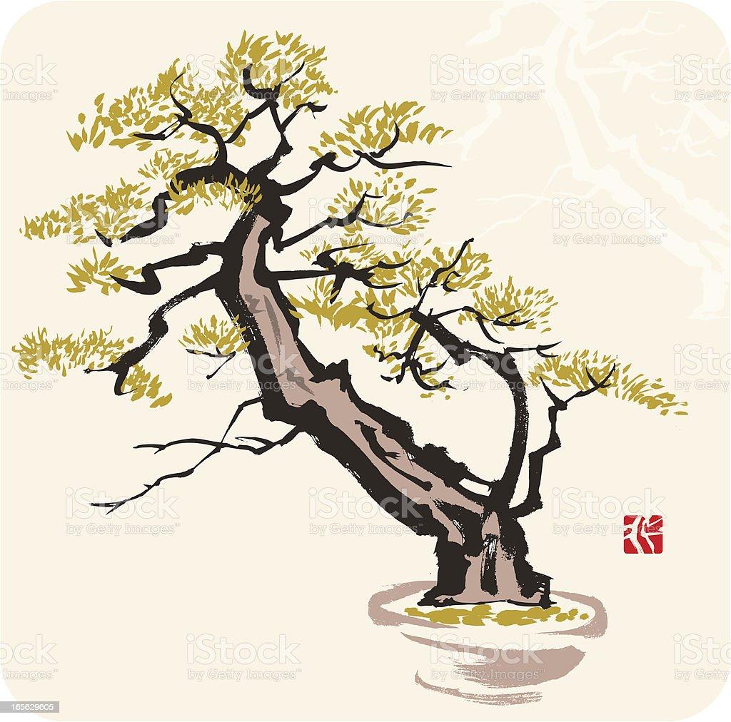 Pine Tree royalty-free stock vector art