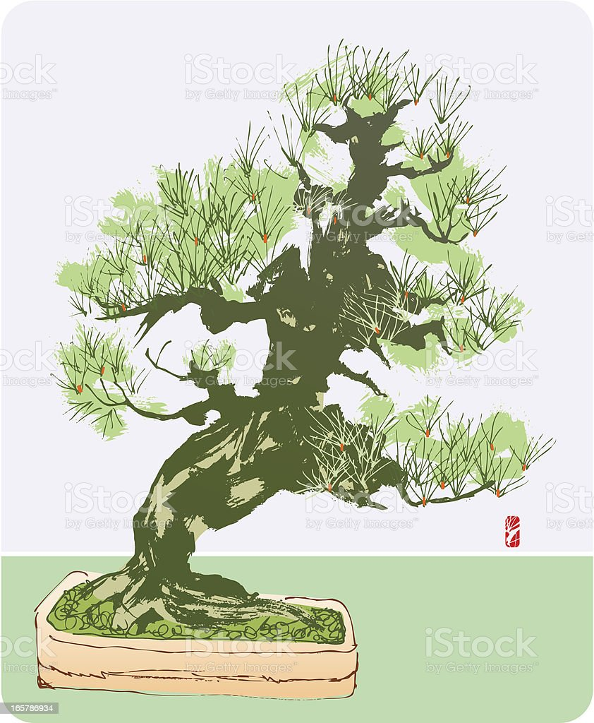 Pine Tree royalty-free stock vector art