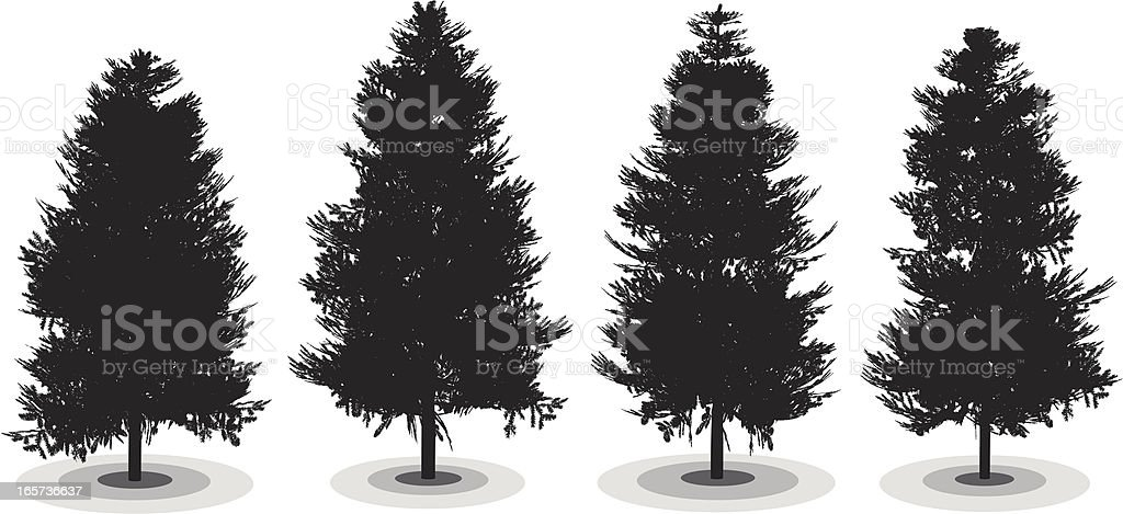 Pine Trees royalty-free stock vector art