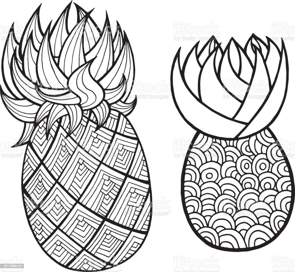 Ananas Und Ananas Malvorlagen Grafische Schwarzweiß Vektorgrafiken