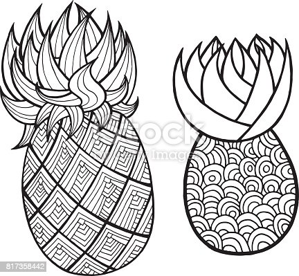 Pineapple And Ananas Coloring Page