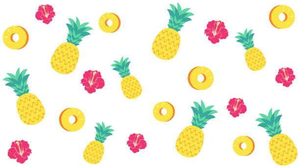 Pineapple and hibiscus background material vector art illustration