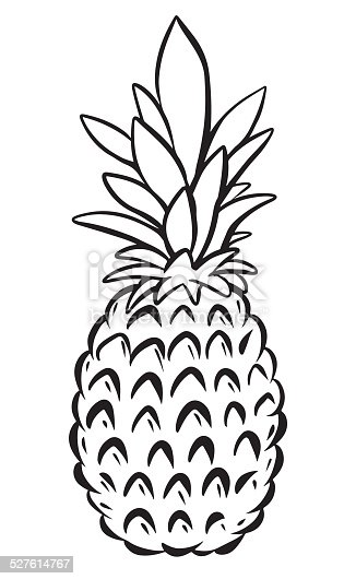 Pineapple Black Sketch Cartoon Hand Drawn Illustration