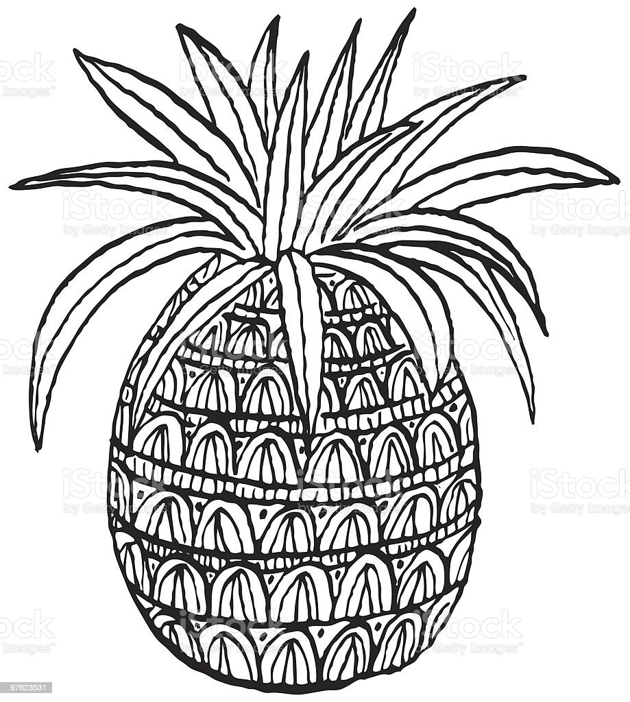 Pineapple drawing royalty-free pineapple drawing stock vector art & more images of color image