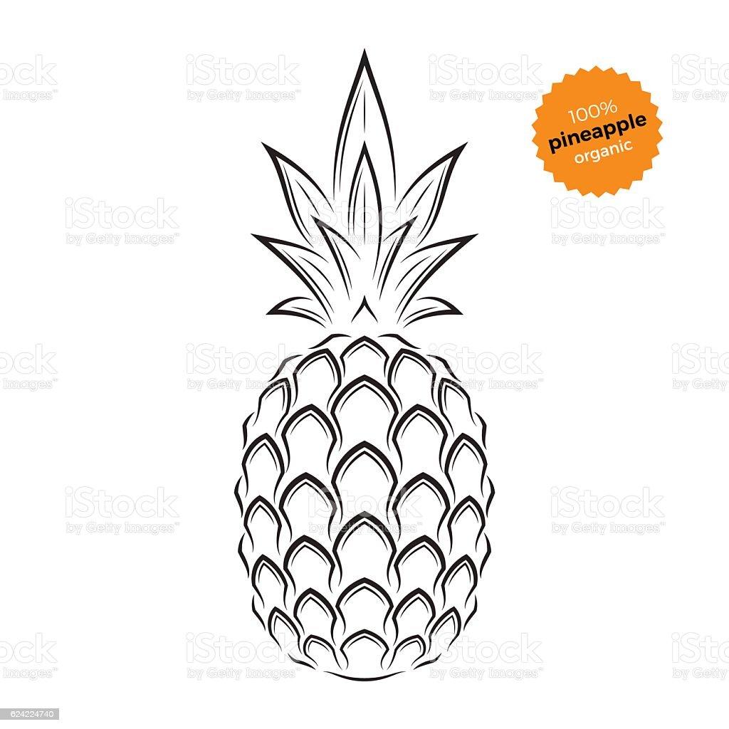 Pineapple emblem, label, symbol. – artystyczna grafika wektorowa