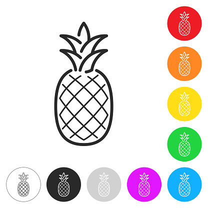 Pineapple. Flat icons on buttons in different colors
