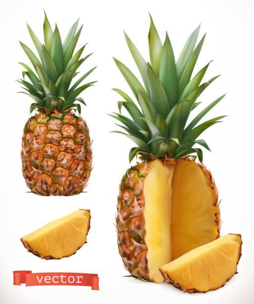 illustrazioni stock, clip art, cartoni animati e icone di tendenza di pineapple. fresh fruit 3d realistic vector icon - ananas